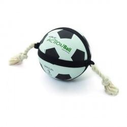Action ball pour chien