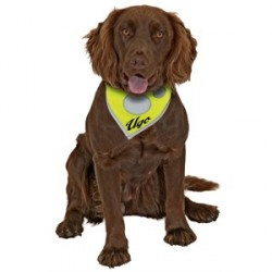 Foulard de sécurité Safety Dog