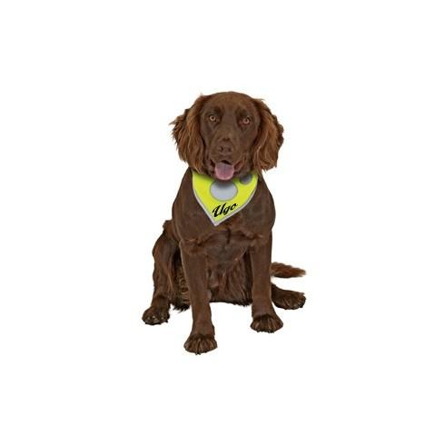 Foulard de sécurité Safety Dog