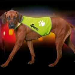 Safety Dog Gilet de sécurité