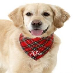 Collier en nylon et foulard Scotland