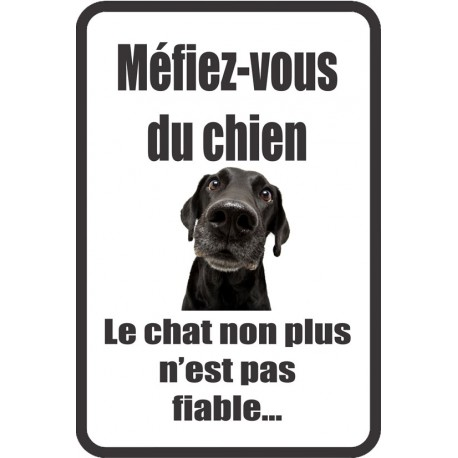 Stickers humour attention au chien for Salon du chien et chat