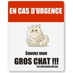 Stickers Gros chat