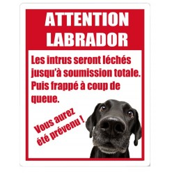 Stickers Attention Labrador