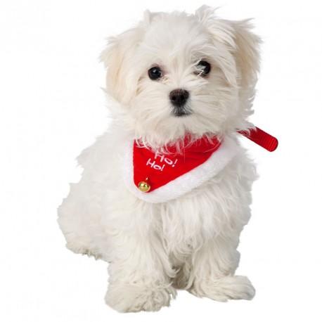 Bandana chien Noël