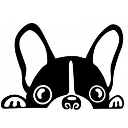 Stickers chien Mignon