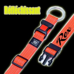 Collier chien Art Sportiv plus reflex