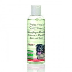 Shampooing pour chien Basic