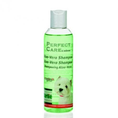 Shampooing pour chien à l'Aloé Vera