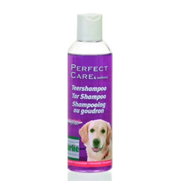 Shampooing pour chien anti pelliculaire for Antipelliculaire maison