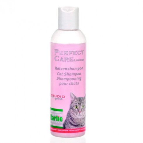 Shampooing pour Chat et chaton