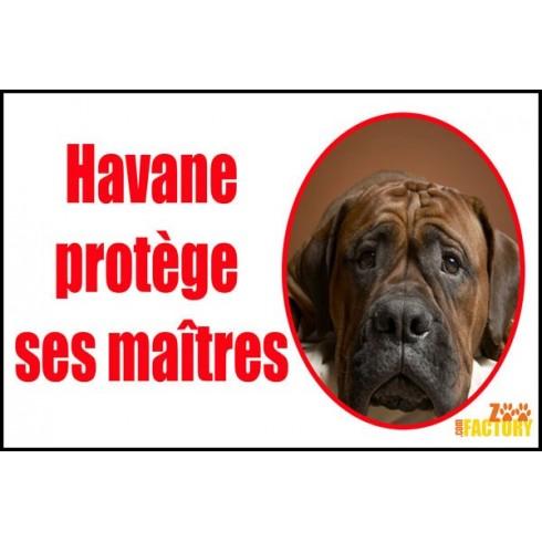 Plaque de rue personnalisée chien Je protège mes maîtres