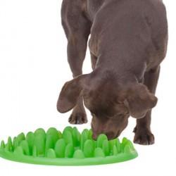 Gamelle révolutionnaire GREEN pour chien