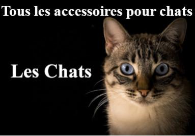 Chats